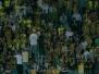 16 Ağustos 2009  Fenerbahçe 3-0 Sivasspor  (Süper Lig 2\'nci Hafta Karşılaşması)